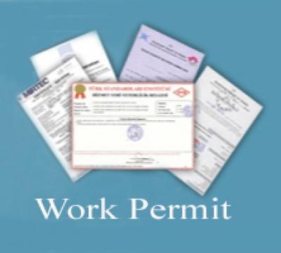 Việt kiều có cần phải làm giấy phép lao động không